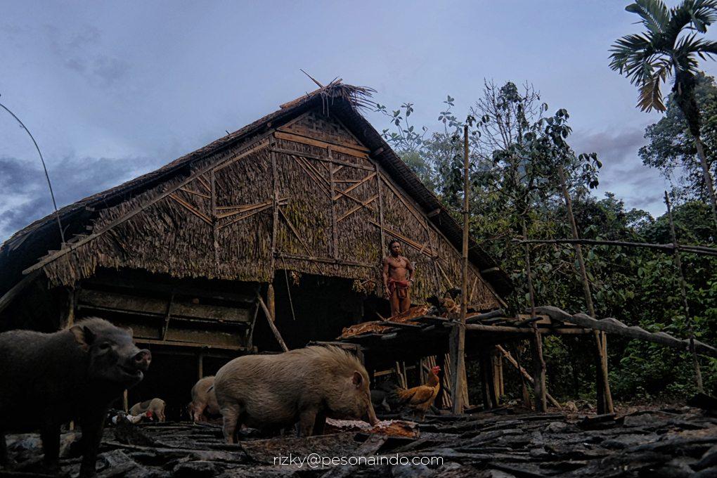 Paket wisata Mentawai