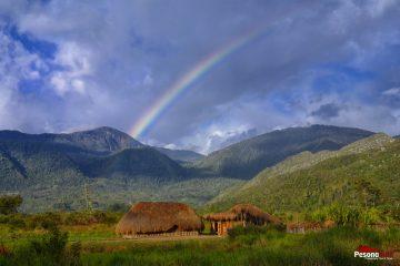 Paket Wisata Lembah Baliem Wamena