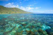 Paket Wisata Alor Island Pesona Indonesia - fototrip 4