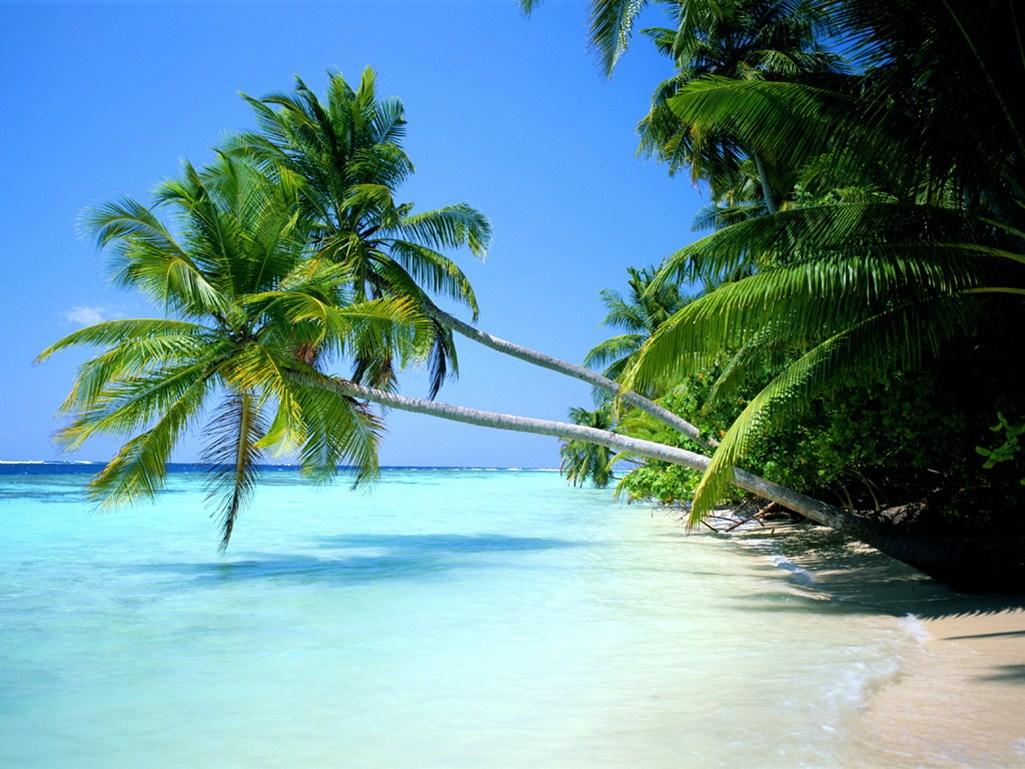 Wisata Ke Pulau Banda