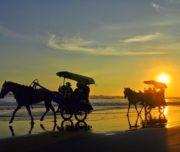 Paket Wisata One Day Trip Jogja Pesona Indonesia - fototrip 5