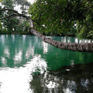 Paket Wisata Tangkahan Sumatera Utara Pesona Indonesia - fototrip 1