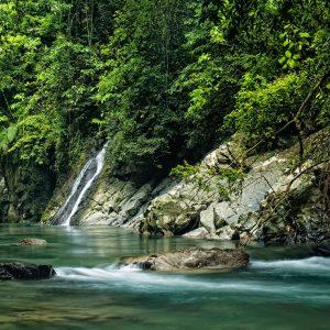 Paket Wisata Tangkahan Sumatera Utara Pesona Indonesia - fototrip 3