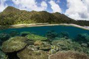 Paket tour murah wisata Raja ampat papua