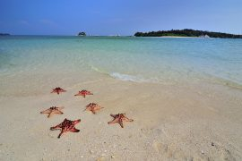 Photo Tour Belitung