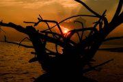 Foto Travel Story ke Kepulauan Derawan Pesona Indonesia - fototrip 12