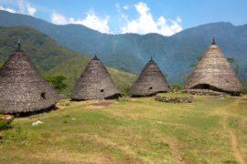 Waerebo Overland Flores tour paket wisata